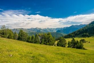 Vés a: El Govern aprova el projecte de llei que permetrà preservar el sòl d'ús agrari