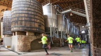 La I Marató del Priorat ja compta amb 300 participants