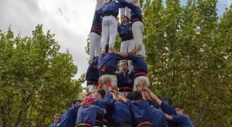 Els Capgrossos i els Borinots volen portar castells de 9 a Esplugues