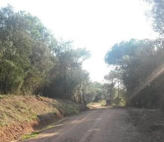 Arranjament del camí de Vilamajor a Santa Maria de Palautordera