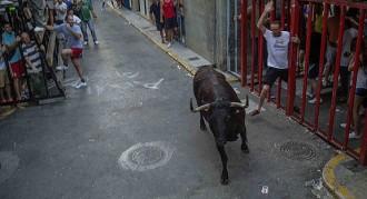 Fabra blinda els bous al carrer i els eleva a categoria «universal»