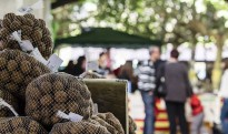 La Fira de la Nou de Montesquiu augmenta el nombre de parades