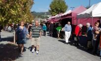 La mala temporada frena l'afluència a la Festa del Bolet de Cal Rosal