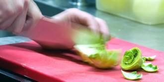 Puig-reig oferirà un nou FP públic i dual sobre agroalimentació