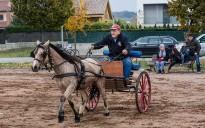 Els carros i els cavalls marquen l'inici de la festa Major de Gurb