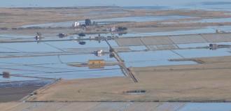 La CE advertix al govern espanyol del baix cabal ambiental del Pla de l'Ebre