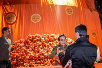 L'ACO reparteix més de 3.000 quilos de taronges