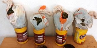 Troben marihuana amagada en pots de Cola-Cao