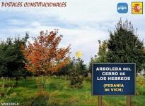 Toponímia constitucional: el bosc del Puig dels Jueus