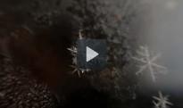 Vídeo: Com es forma un floc de neu?