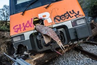 Dos joves van salvar la vida al maquinista del tren accidentat