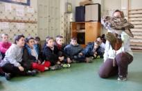 Vés a: Les aus rapinyaires del Pirineu entren a les escoles del Solsonès