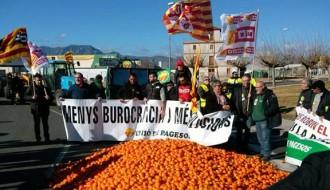3.000 kgs de mandarines pel terra per demanar ajut davant la crisi del cítric