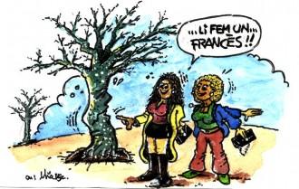 ...Solsona estrena nou sistema de poda dels arbres...