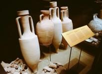 Vés a: El Museu de Badalona obre les portes a l'enoturisme