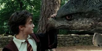 Vés a: La música de «Harry Potter i la Pedra Filosofal», en concert al Palau Sant Jordi