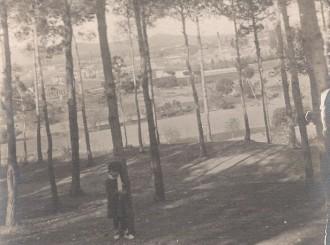 Bosc de Ca n'Aurell de Terrassa (27/03/1914) / Foto: Rafel Comes