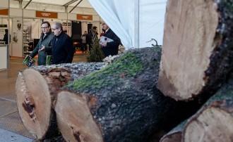 Vés a: La Fira de Biomassa Forestal de Catalunya passa a ser bianual