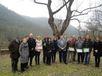 Vés a: El CFFE rep l'homologació del sistema de formació forestal europeu EFESC