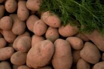 La patata o trumfo