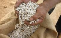 Vés a: Un any més la Diada de Territori de Masies permet tastar els productes de proximitat
