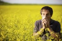Com conviure amb les al·lèrgies primaverals