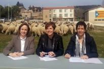 Vés a: Un ramat de cavalls farà la transhumància del Pirineu al Parc del Garraf per passar-hi l'hivern
