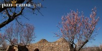 Vés a: L'art de la pedra seca (I): La barraca del Manilles a la Plana de l'Alt Camp
