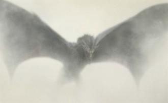 Un gran drac desafia el nou cartell de «Joc de Trons»