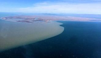 Vés a: SEO/Birdlife engega una campanya per exigir l'arribada de cabal i sediments al delta de l'Ebre