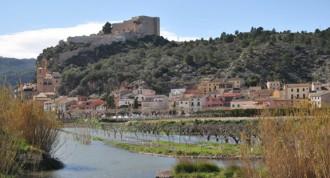 Vés a: CHE multa l'Ajuntament de Miravet amb 3.600 euros per no depurar