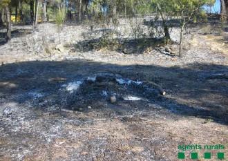 Prohibit encendre foc al bosc fins el 15 d'octubre