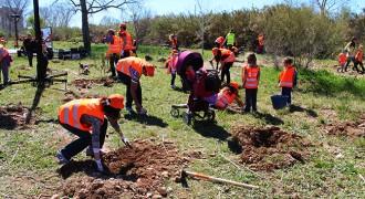 La quarta plantada popular suma més de mil arbres a la llera del Francolí