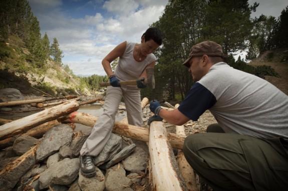 Vés a: Arriba la vuitena edició del Projecte Boscos de Muntanya al Pirineu