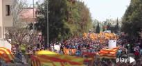 El vídeo de la manifestació protaurina