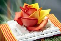 Les roses més originals