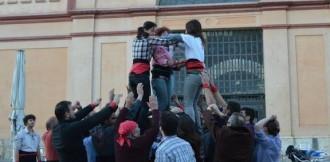 Els Castellers de Tortosa, acceptats com a nova colla en formació