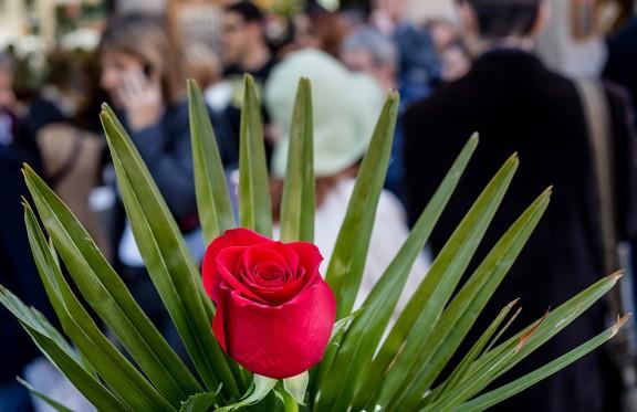 La diada de Sant Jordi a Barcelona