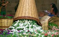 Vés a: El GEiEG celebra l'aniversari amb el Temps de Flors