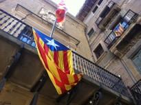 Vés a: Les estelades tornen a onejar als ajuntaments catalans