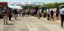 Vés a: Ecologistes i pagesos s'enfronten pel futur de l'aeròdrom d'Alfés