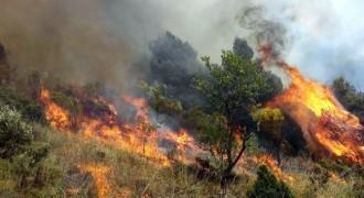 Risc d'incendi forestal molt important al Tarragonès