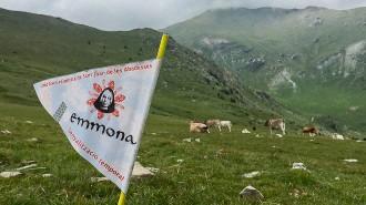 L'Emmona 2016 es disputarà entre el 27 i el 29 de maig, amb nou format