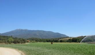 Sant Celoni ha tingut una temperatura màxima de 34,5 graus