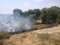 Petit incendi forestal a Roda de Ter