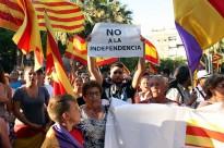 Vés a: El 26 de juny, Pacte Nacional pel Dret a Decidir