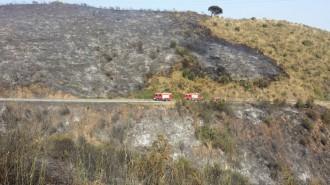 Vés a: L'incendi de Collserola crema 18 hectàrees