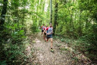 Les fotos de la War Clubs Run de Sant Feliu de Pallerols 2015
