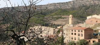 Les vinyes més famoses del Priorat
