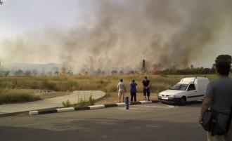 Cremen uns camps agrícoles al barri de Sant Josep Obrer a Reus